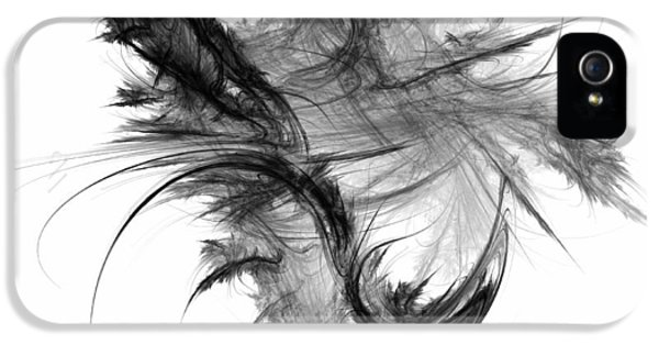 Feathers iPhone 5 Cases - Feathers and Thread iPhone 5 Case by Scott Norris