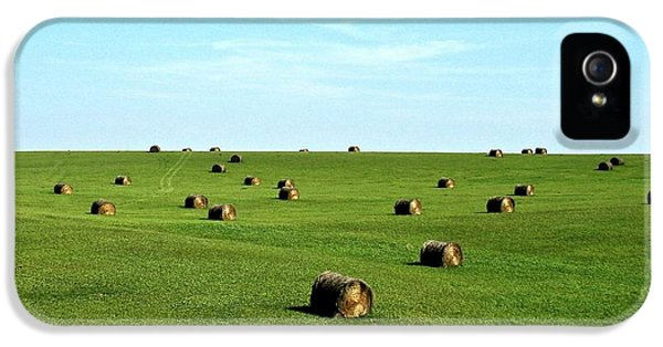 Fields Of Green IPhone 5 / 5s Case by Mark Mickelsen