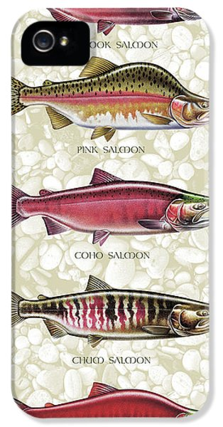Fishing iPhone 5 Cases - Five Salmon Species  iPhone 5 Case by JQ Licensing