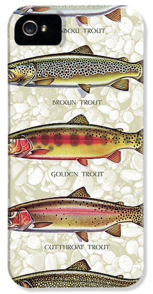 Fishing iPhone 5 Cases - Five Trout Panel iPhone 5 Case by JQ Licensing