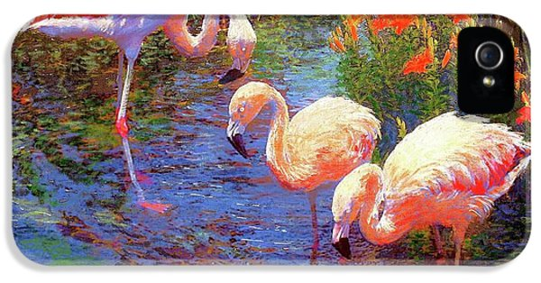Flamingos, Tangerine Dream IPhone 5 / 5s Case by Jane Small