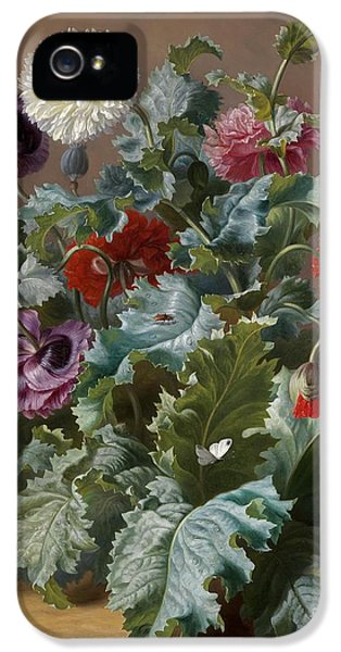 Flower Piece With Poppies And Butterflies IPhone 5 / 5s Case by Celestial Images