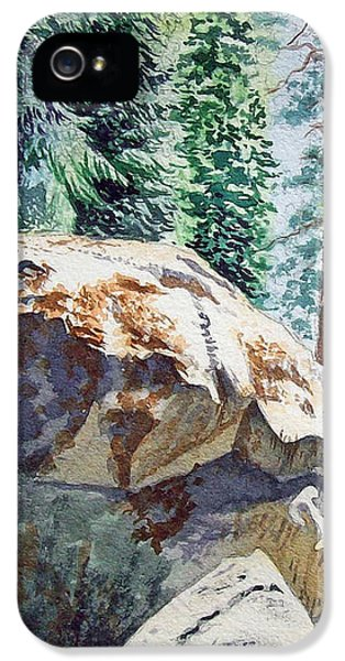 Forrest iPhone 5 Cases - Forest iPhone 5 Case by Irina Sztukowski
