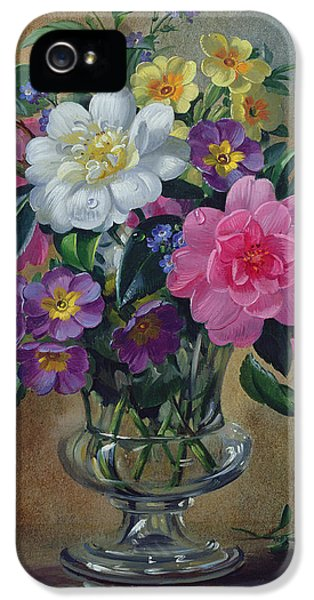 Forget Me Not iPhone 5 Cases - Forget me nots and primulas in glass vase iPhone 5 Case by Albert Williams