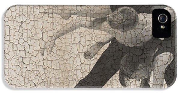 Brick iPhone 5 Cases - Forgotten Romance  iPhone 5 Case by Naxart Studio
