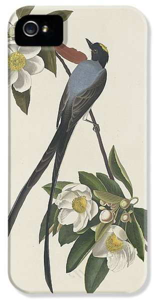 Forked-tail Flycatcher IPhone 5 / 5s Case by John James Audubon