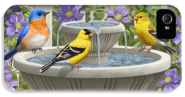 Fountain Festivities - Birds And Birdbath Painting IPhone 5 / 5s Case by Crista Forest