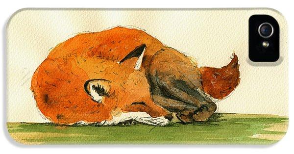 Fox iPhone 5 Cases - Fox sleeping painting iPhone 5 Case by Juan  Bosco