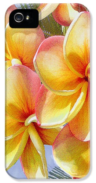 Frangipani Pink And Yellow IPhone 5 / 5s Case by Jane Schnetlage