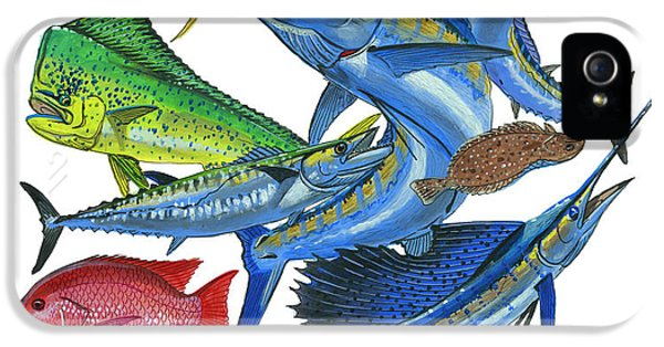 Gamefish Collage IPhone 5 / 5s Case by Carey Chen