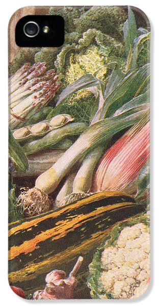 Garden Vegetables IPhone 5 / 5s Case by Louis Fairfax Muckley