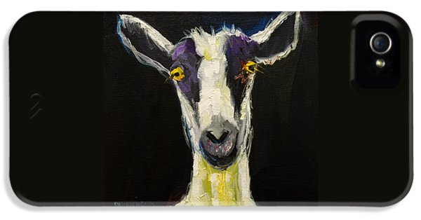 Wall iPhone 5 Cases - Goat Gloat iPhone 5 Case by Diane Whitehead