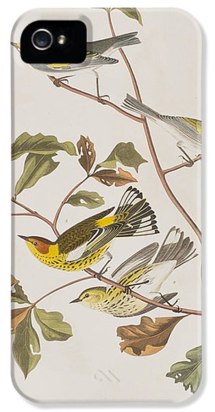 Golden Winged Warbler Or Cape May Warbler IPhone 5 / 5s Case by John James Audubon