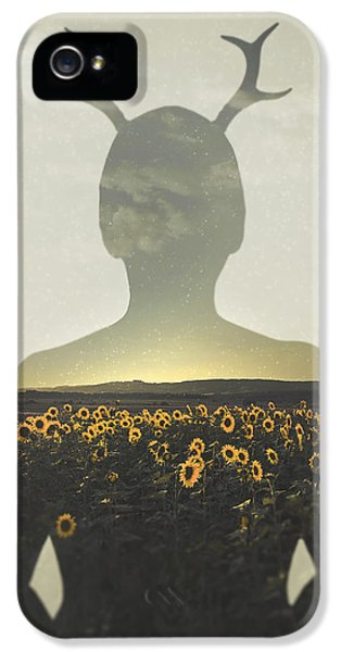Goodbye Summer IPhone 5 / 5s Case by Art of Invi