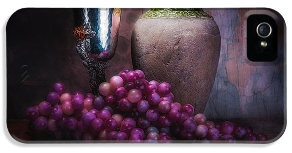 Grapes And Silver Goblet IPhone 5 / 5s Case by Tom Mc Nemar