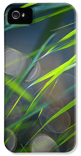 Grass And Evening Light IPhone 5 / 5s Case by Silke Magino