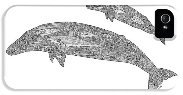 Whale iPhone 5 Cases - Gray Whale and Calf iPhone 5 Case by Carol Lynne
