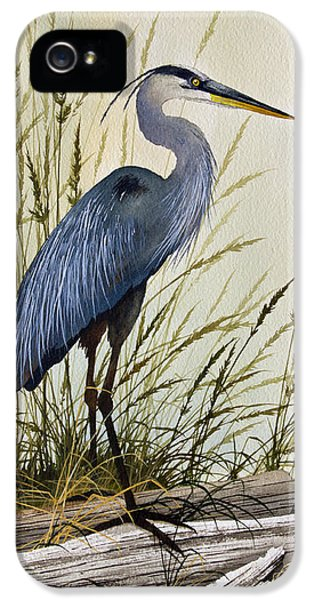 Great Blue Heron Splendor IPhone 5 / 5s Case by James Williamson