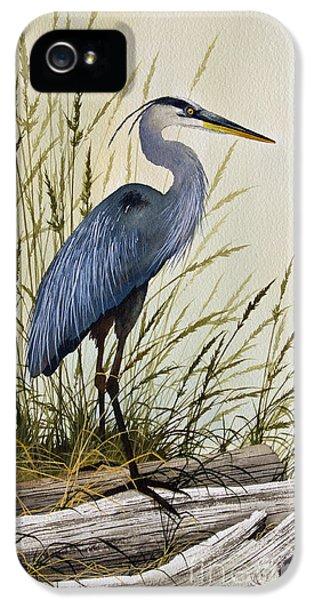 Framed iPhone 5 Cases - Great Blue Heron Splendor iPhone 5 Case by James Williamson
