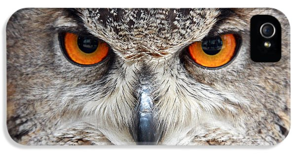 Great Horned Owl IPhone 5 / 5s Case by Pierre Leclerc Photography