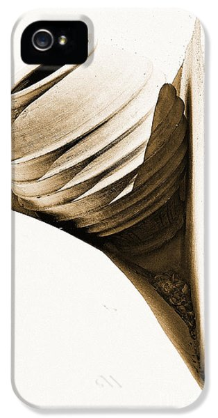 High Key iPhone 5 Cases - Greek Urn iPhone 5 Case by Meirion Matthias