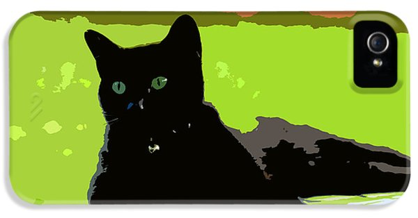 Green Eyes IPhone 5 / 5s Case by David Lee Thompson