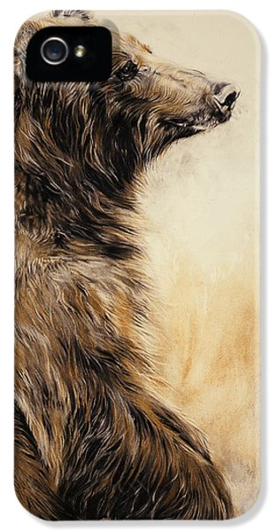 Grizzly Bear 2 IPhone 5 / 5s Case by Odile Kidd