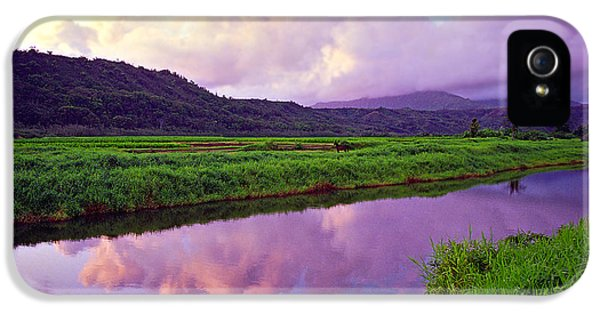 River iPhone 5 Cases - Hanalei Dawn iPhone 5 Case by Kevin Smith