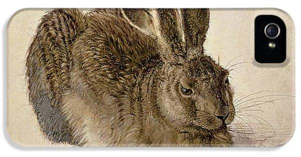 Hare IPhone 5 / 5s Case by Albrecht Durer