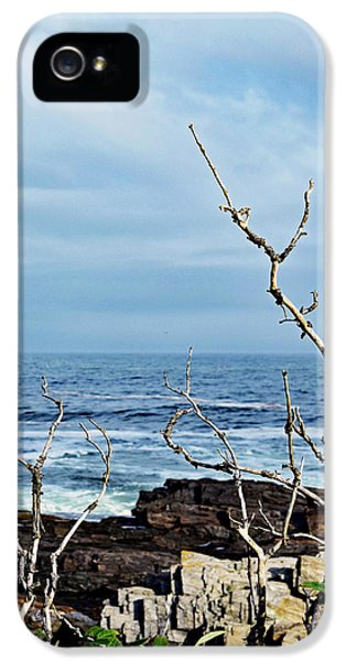 Harpswell, Maine No. 47 IPhone 5 / 5s Case by Sandy Taylor