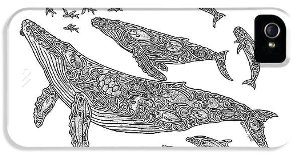 Whale iPhone 5 Cases - Hawaiian Humpbacks iPhone 5 Case by Carol Lynne
