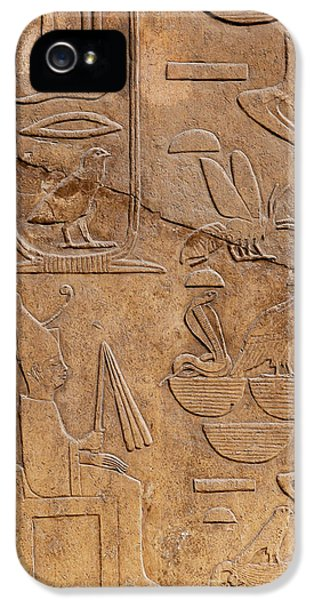 Archeology iPhone 5 Cases - Hieroglyphs on ancient carving iPhone 5 Case by Jane Rix