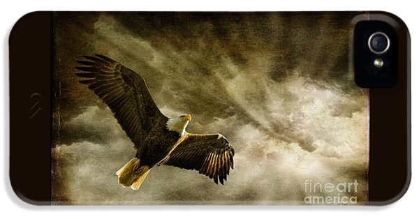 Eagle iPhone 5 Cases - Honor Bound iPhone 5 Case by Lois Bryan