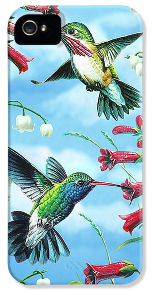 Songbird iPhone 5 Cases - Humming Birds iPhone 5 Case by JQ Licensing