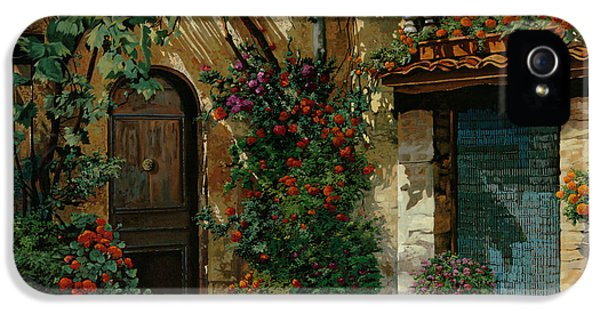 France iPhone 5 Cases - Il Giardino Francese iPhone 5 Case by Guido Borelli