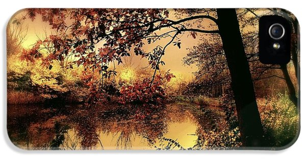Forrest iPhone 5 Cases - In Dreams iPhone 5 Case by Photodream Art