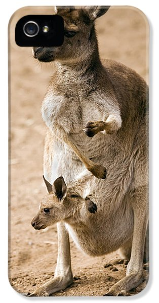 In  Mother's Care IPhone 5 / 5s Case by Mike  Dawson