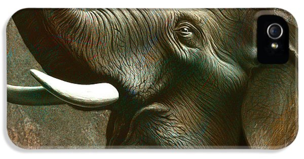 Zoo iPhone 5 Cases - Indian Elephant 3 iPhone 5 Case by Jerry LoFaro