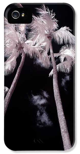 Infrared iPhone 5 Cases - Infrared Palm Trees iPhone 5 Case by Adam Romanowicz
