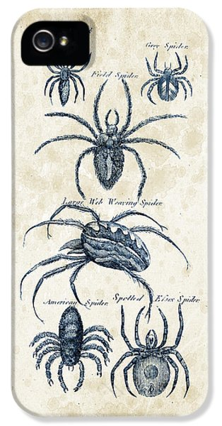 Spider iPhone 5 Cases - Insects - 1792 - 18 iPhone 5 Case by Aged Pixel
