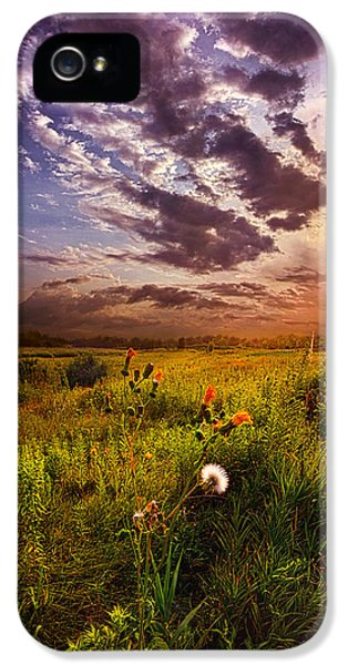 Blue Leaf iPhone 5 Cases - Into Paradise May the Angels Lead You iPhone 5 Case by Phil Koch