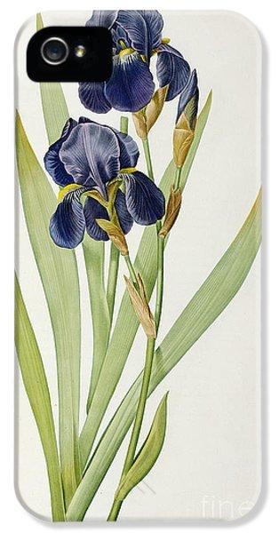 Iris Germanica IPhone 5 / 5s Case by Pierre Joseph Redoute