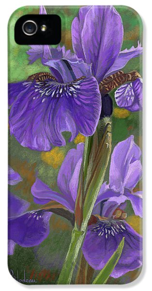 Irises IPhone 5 / 5s Case by Lucie Bilodeau