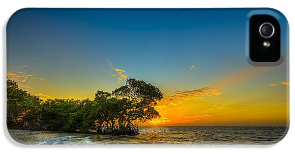 Bayou iPhone 5 Cases - Island Paradise iPhone 5 Case by Marvin Spates
