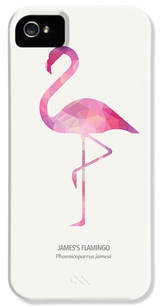 Flamingo iPhone 5 Cases - Jamess Flamingo iPhone 5 Case by Taylan Soyturk