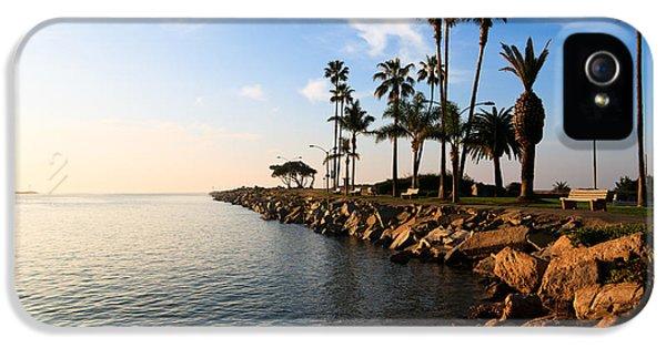 Newport Beach iPhone 5 Cases - Jetty on Balboa Peninsula Newport Beach California iPhone 5 Case by Paul Velgos