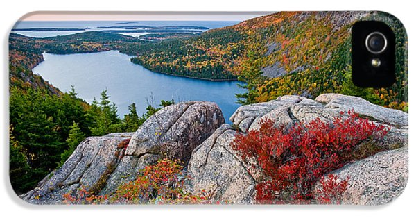 Foliage iPhone 5 Cases - Jordan Pond Sunrise  iPhone 5 Case by Susan Cole Kelly
