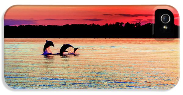 Joy Of The Dance IPhone 5 / 5s Case by Karen Wiles