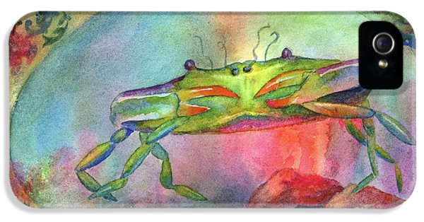 Blue Crab iPhone 5 Cases - Just a Little Crabby iPhone 5 Case by Amy Kirkpatrick