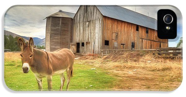 Just Another Day On The Farm IPhone 5 / 5s Case by Donna Kennedy